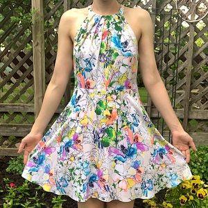 Express halter neck watercolor floral a line dress